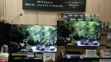 新商品の4K有機テレビと液晶テレビが展示されました!